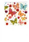 Farebné motýle