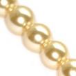 voskované perličky 10 mm- 10 ks v balení-krémové