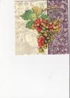 Rôznofarebné hrozno na fialovom podklade