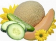Vôňe do kozmetiky a sviečky10ml-uhorka a melón