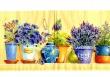 Levanduľa a iné lúčne kvety vo váze