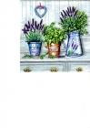 Levanduľa a bylinky v kvetináčoch