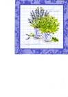 Levanduľa a bazalka v kvetináči