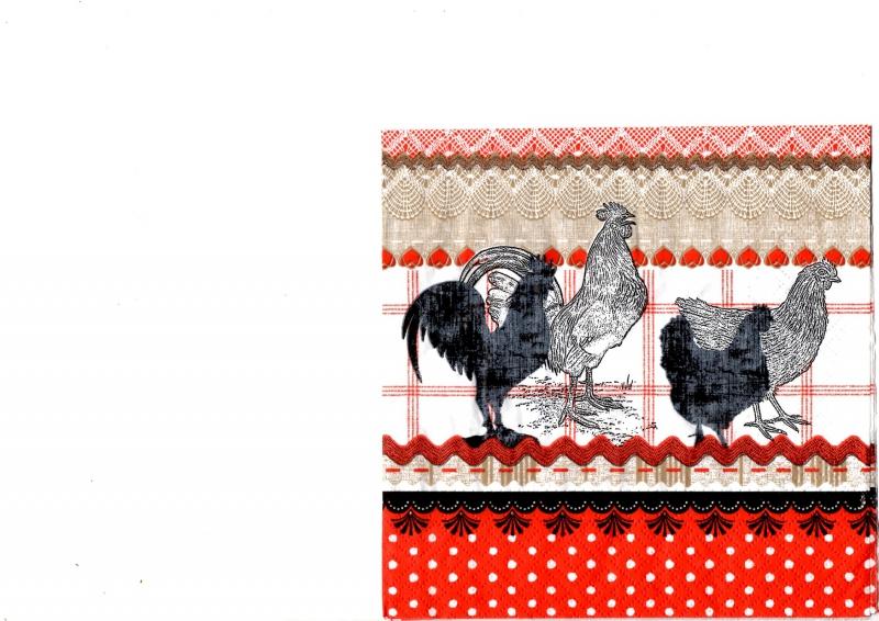 Čiernobieli kohút a sliepočka na farebnom podklade